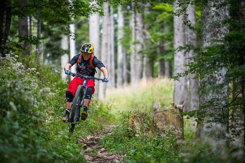 Trans Slovenia 3 mountain biker