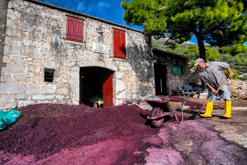 Trans Croatia old house wine making